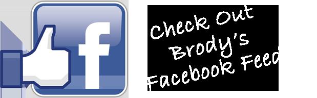 Facebook-feed-logo2
